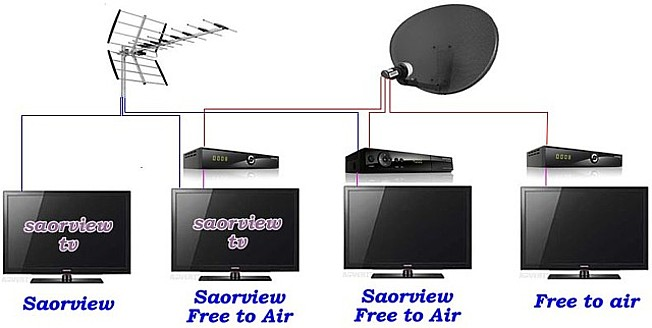 Multiroom Saorview and Freesat Options